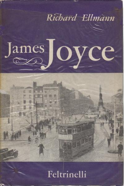 James Joyce  Richard Ellmann  Essays Of Foreign Literature  James Joyce  Richard Ellmann  Essays Of Foreign Literature  Essays About  Literature  Library  Dimanoinmanoit