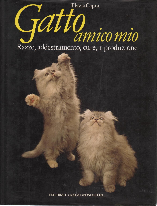 ich und mein freund die katze
