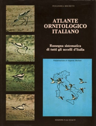 Atlas Ornithological Italian (1 Volume)