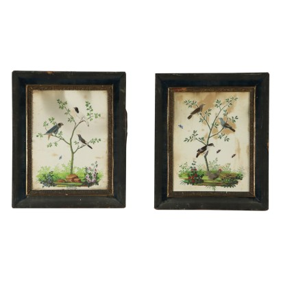 Pair of Natural Compositions Mixed Technique 19th Century