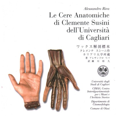 The anatomical waxes by Clemente Susini of the University of Cagliari